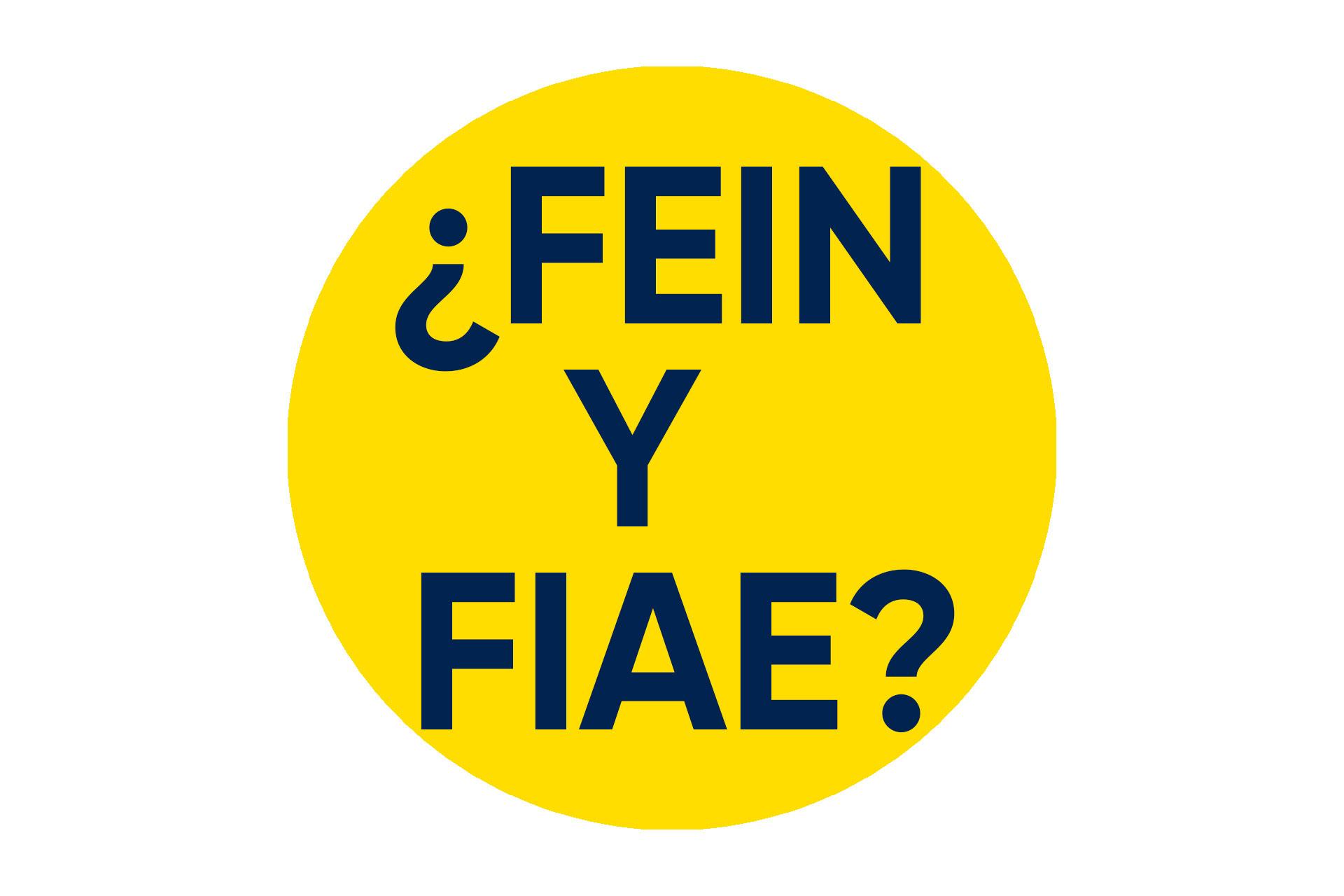 FEIN-Y-FIAE
